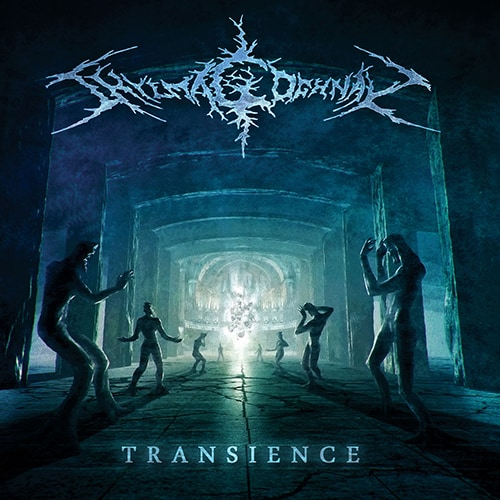 shylmagoghnar transience album cover