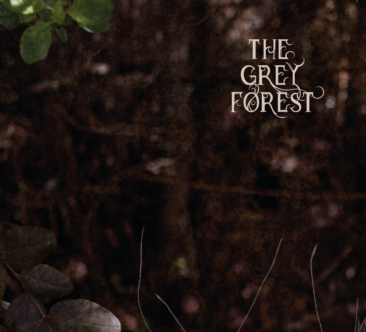 the grey forest album cover